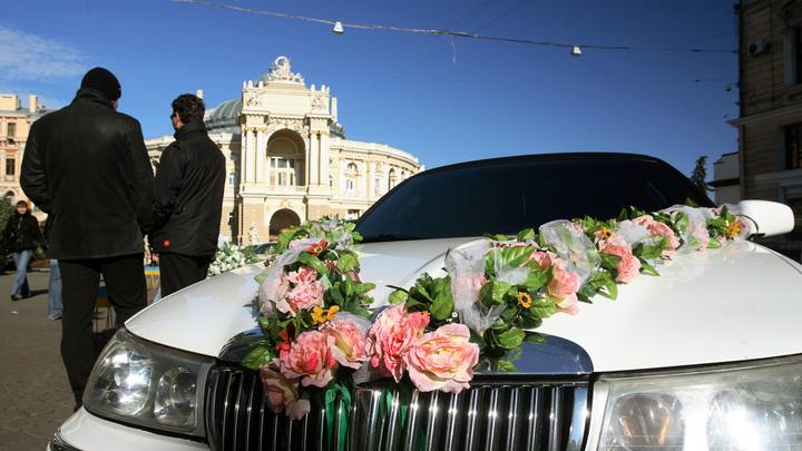 Свадьба ценой в жизнь: Львовянин продал почку, чтобы шикануть и умереть