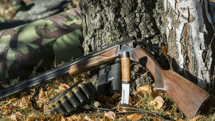 В Ленобласти врачи спасли охотницу с огнестрельным ранением