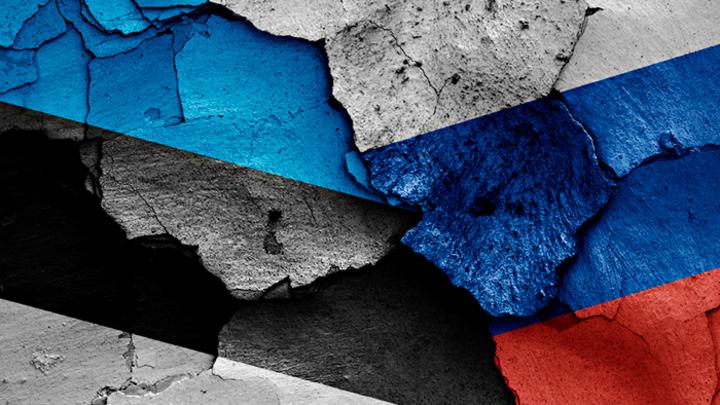 В Эстонии приняты поправки в законы, направленные против недовольства русскоязычных