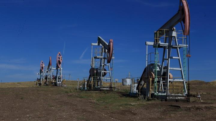 В Польше пожаловались, что через Дружбу  пошла российская нефть плохого качества