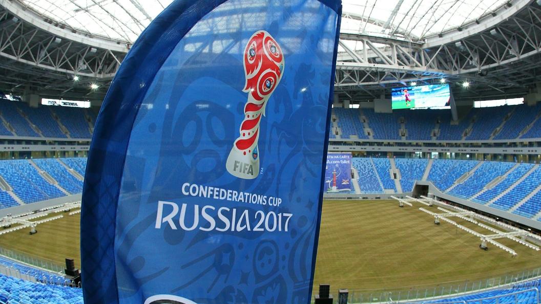 Кот Ахилл предсказал сборной РФ победу над новейшей Зеландией