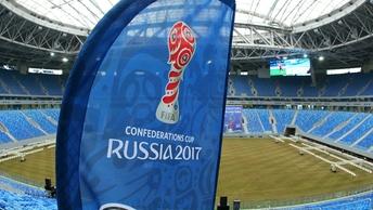 Кот Ахилл выбрал победителя первого матча Кубка конфедераций