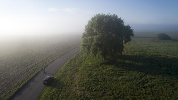 Во Владимирской области устанавливается настоящая летняя погода: с солнцем и грозами