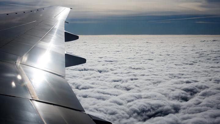 Более 60 пассажиров на борту: Птица попала в двигатель самолёта Победы