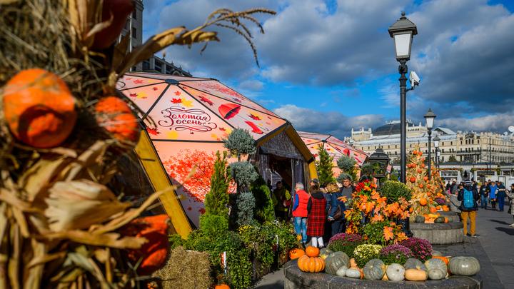 Лучшие сезонные блюда и путешествия по эпохам: В Москве стартует фестиваль Золотая осень на более чем 1500 площадках