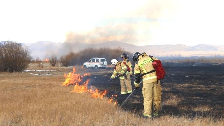 За неделю в Забайкалье выгорело 669 гектаров степи