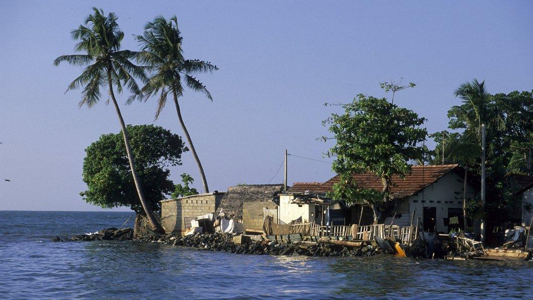 Двое путешественников из России разбились в ДТП на Шри-Ланке