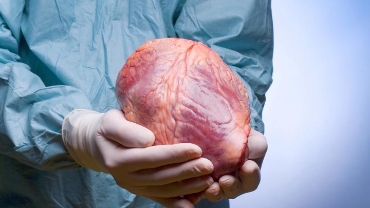 Это судьба? Выжившее в катастрофе донорское сердце уронил споткнувшийся врач