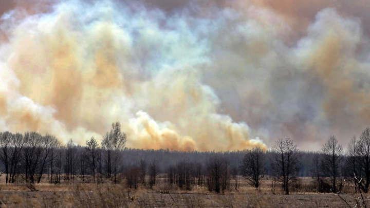 Кто-то хочет подпортить жизнь в стране: На Украине ищут диверсантов, поджигающих леса