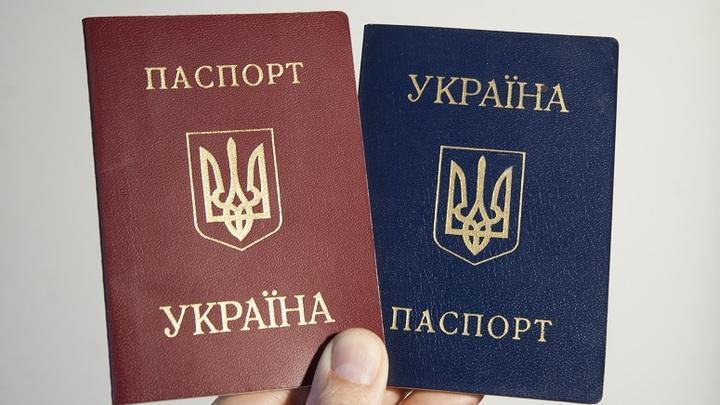 Пусть приезжает и раздаёт: Политолог назвал чушью призыв раздавать паспорта Украины