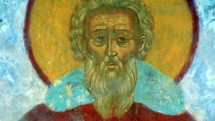 Милосердный подвижник. Преподобный Даниил Переяславский. Церковный календарь на 20 апреля