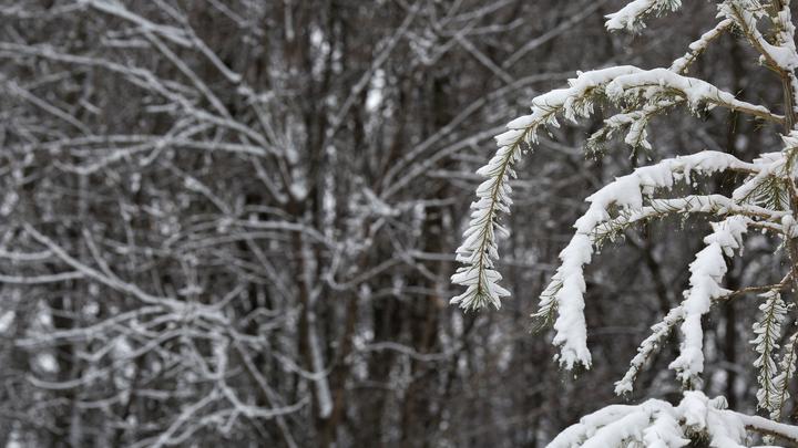 Уборка снега в XXI веке: Опубликовано видео странной работы коммунальщиков в Рузе