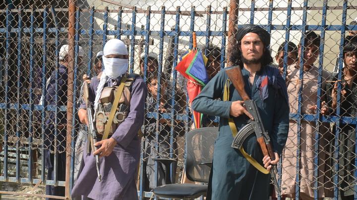 США заключили соглашение с талибами*. На этот раз тайно - CNN