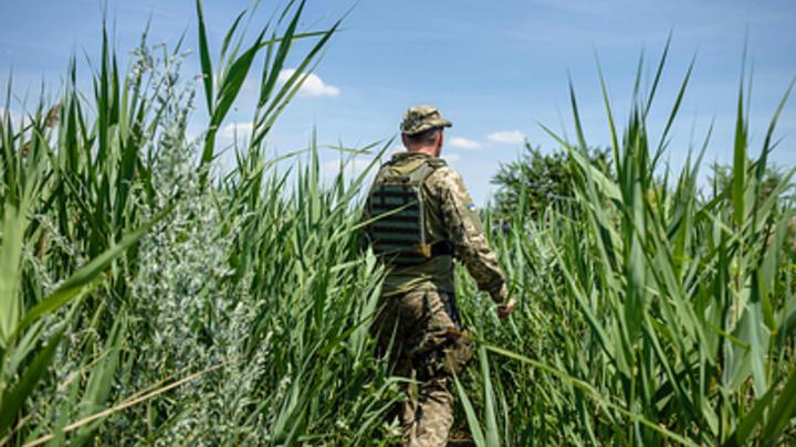 Клоунада с прострелянной ногой: В Крыму дали оценку военным учениям ВСУ у границ России