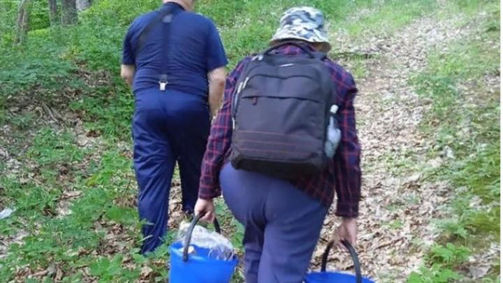 Под Горячим Ключом спасатели вывели из леса заблудившихся грибников