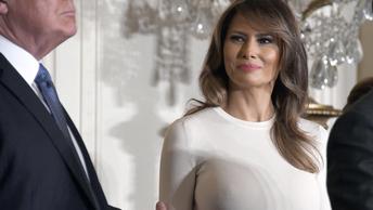 Откровенный наряд Меланьи Трамп озадачил пользователей Сети