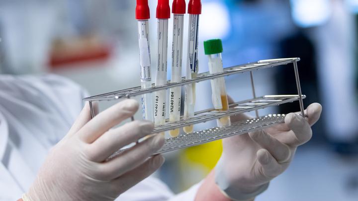 Итальянский профессор: В реальности непосредственно от коронавируса умерли лишь 3 человека