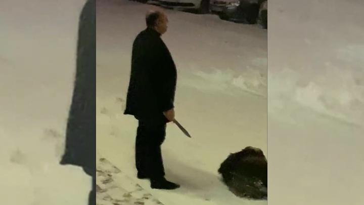 За барана ответят: в Челябинске полиция проверит свадьбу, на которой публично зарезали животное