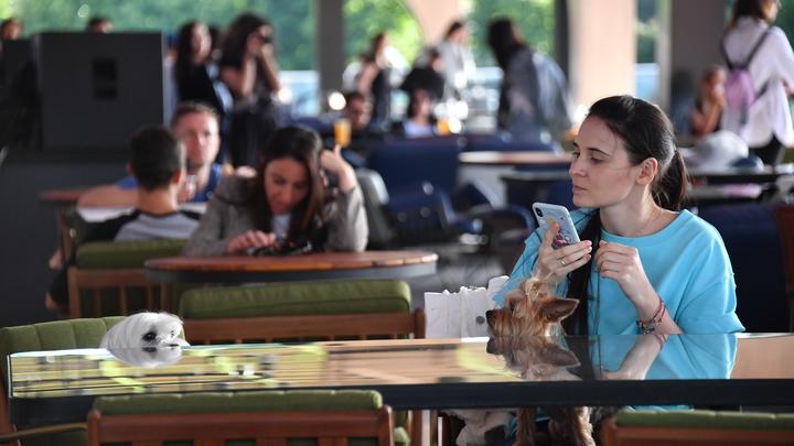 Чем хуже школьная программа, тем сильнее паника: Почему в России боятся 5G