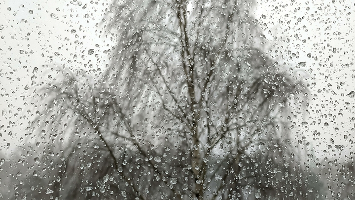 МЧС: в Нижегородской области ожидается ветер до 18 метров в секунду
