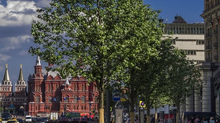 Объявлен график перекрытия Тверской улицы в Москве