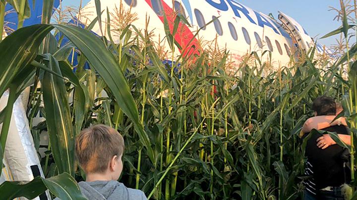 Злость распирает: Как украинские блогеры глумятся над подвигом пилота A321