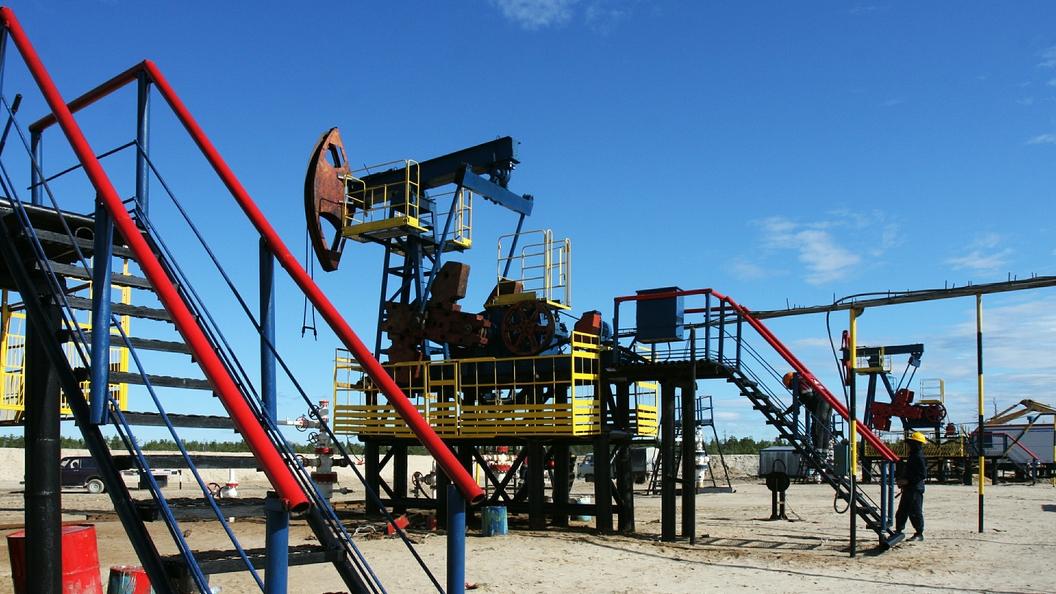 Цена нефти Brent впервый раз  смая превысила $53