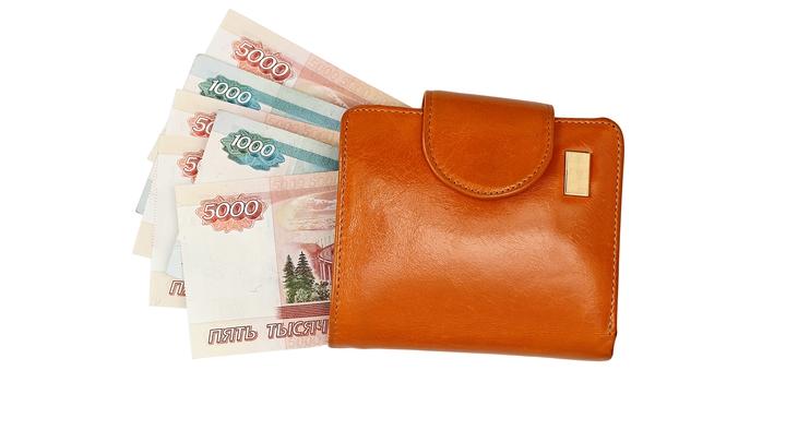 Ленобласть, Приморье, Дагестан: Эксперты назвали 10 регионов, где больше всего подрастут зарплаты