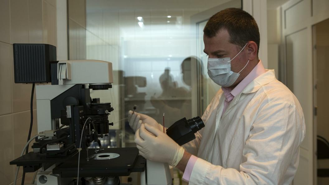 Ученые из Российской Федерации разработали устройство для «просвечивания» земли