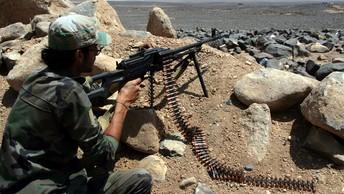 Представители вооруженной оппозиции Сирии прибыли на переговоры в Астану