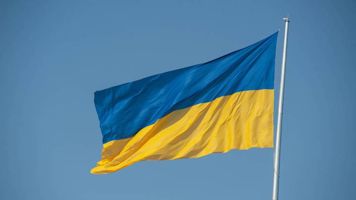 Украинский политолог предостерёг Зеленского от ошибки: Ждать у туалета - несерьёзно