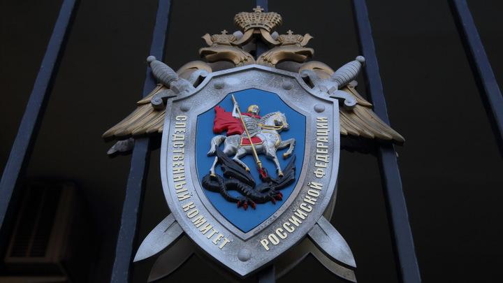 Перед убийством из дома бизнесмена Петрова под Выборгом украли сейф