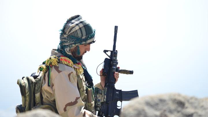 Ополченцы в Панджшере согласились прекратить боевые действия. Условия всего два