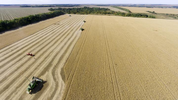 Рекорд СССР по экспорту пшеницы может быть побит