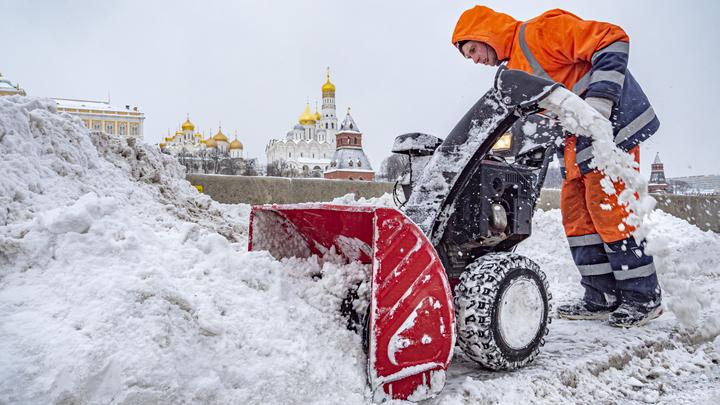 В Новосибирской области снизилось число совершённых мигрантами преступлений