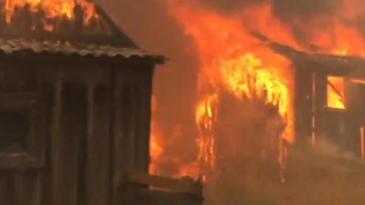 Дышим отравой: из-за пожаров воздух в Найстенъярви наполнили опасные пары фенола
