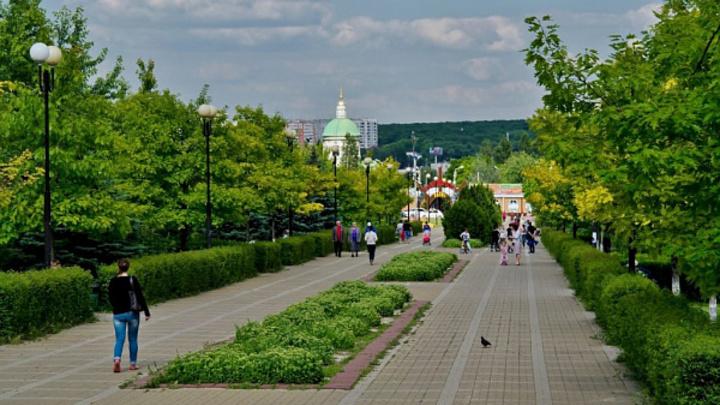 В парке Дружба в Ростове грядет массовая вырубка деревьев