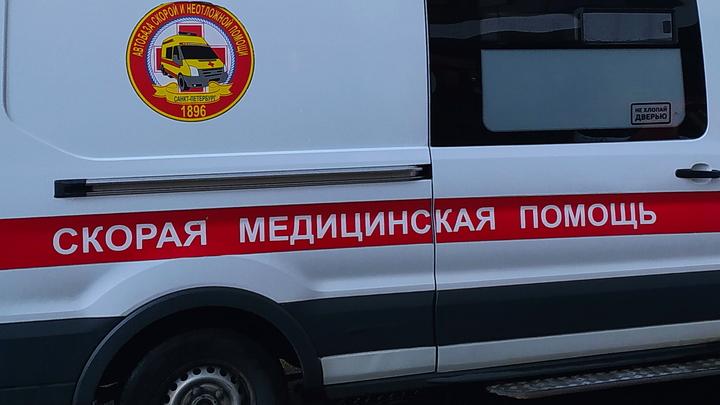 В Ростовской области два пассажира микроавтобуса скончались после столкновения с фурой