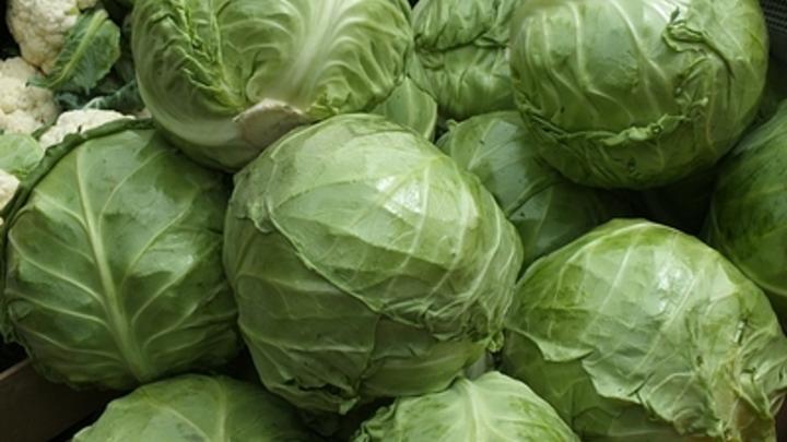 Учёные обнаружили защищающие от смерти от COVID-19 продукты