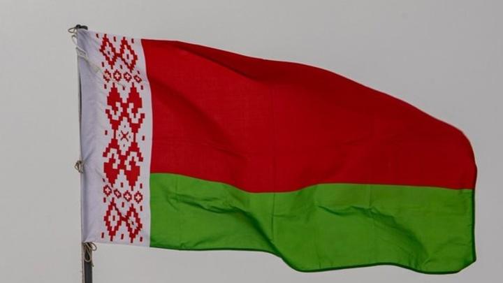 В проекте новой Конституции Беларуси выявлены замечания на 170 листов