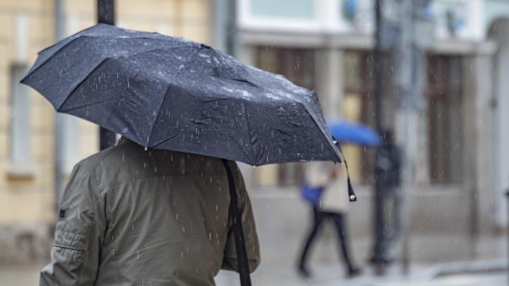 Дожди и прохладная погода сохранятся в Новосибирске до 28 июня
