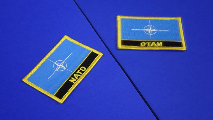 Захарова поразилась волшебно-алогичному призыву НАТО к России