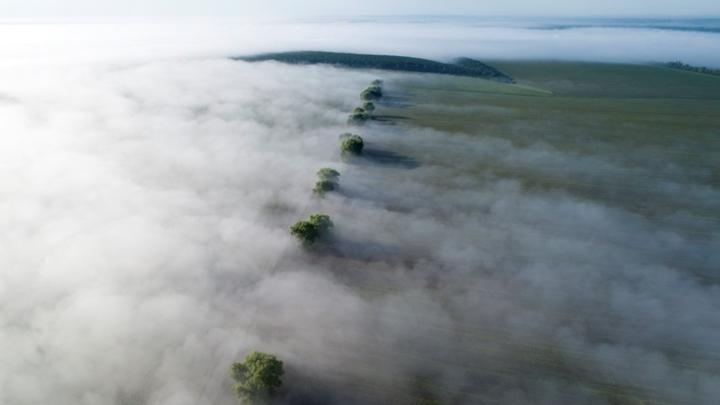 Туманы и сильный ветер ожидаются  Кузбассе в среду 23 июня