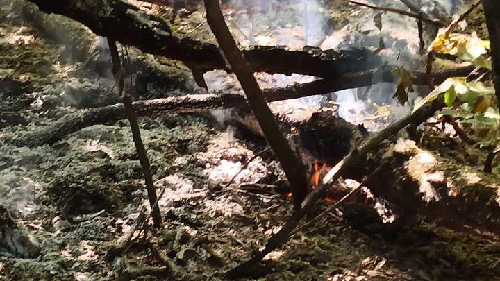 В Челябинске пожарные потушили за сутки 37 пожаров в городском бору