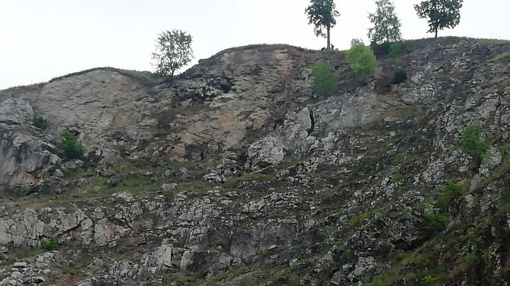 В Челябинской области спасли четверых детей, которые не смогли самостоятельно спуститься с горы
