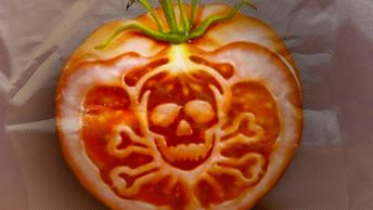 О том, какую эволюцию хотят России борцы с лженаукой, ГМО и религией