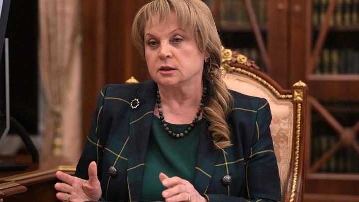 Люди с пещерным сознанием: Памфилова ответила на критику дистанционного голосования