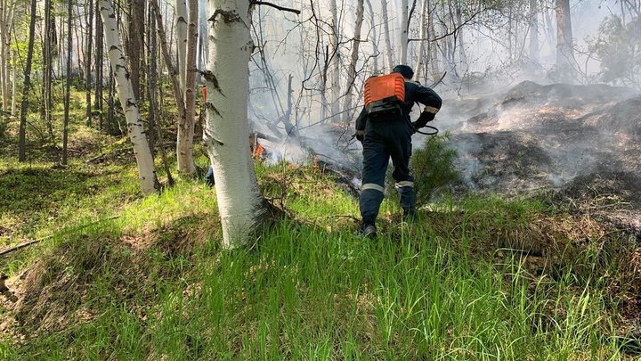 Свердловским ликвидаторам природных пожаров выплатят по 50 тысяч рублей