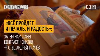Всё пройдёт, и печаль, и радость: Зачем нам даны контрасты жизни — отец Андрей Ткачёв