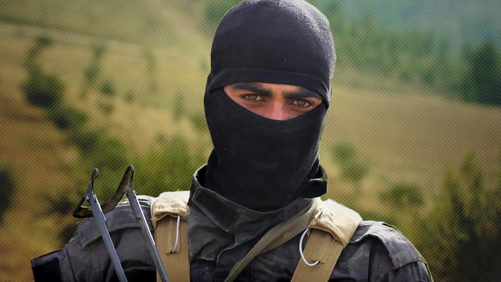 Курды могут стать новым ИГИЛ для США. Что делать России?